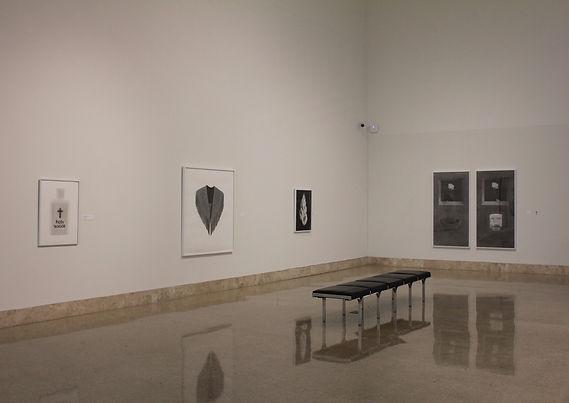 Ashley Thomas, Art Museum of South Texas