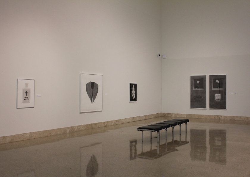 Ashley Thomas, Art Museum of South Texas