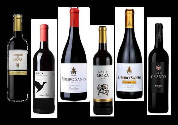 Portugali maitsed (punaste veinide valik) 75 cl x 6