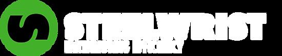 steelwrist_main_logo.png