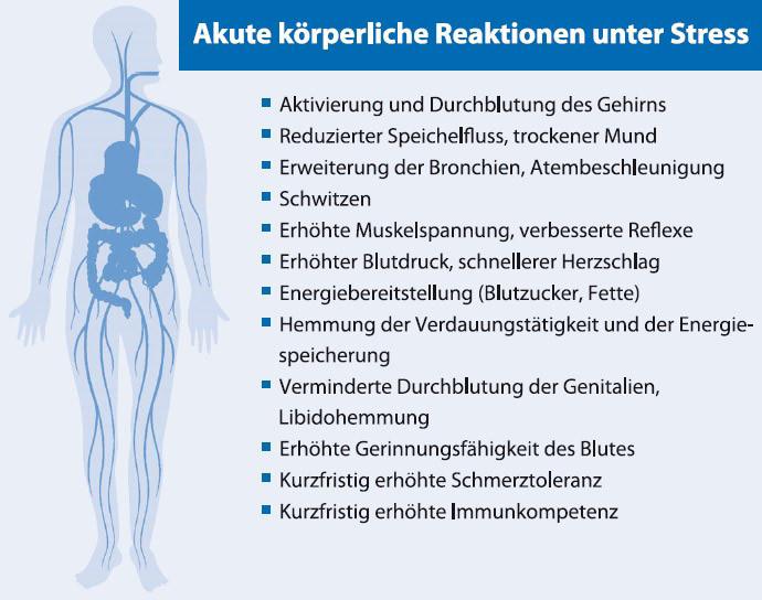 Abb. A2: Aktute körperliche Reaktionen unter Stress (Kaluza, Stressbewältigung, 2011)