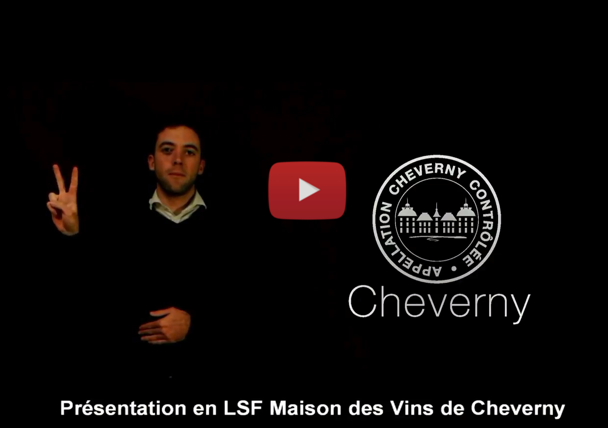 Vidéo LSF