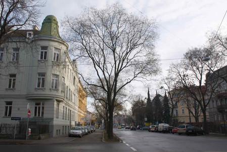 Hietzinger Hauptstrasse, Vienna, 2009 -