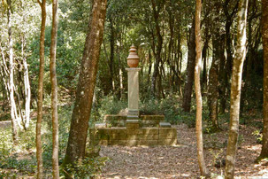 Bosco della ragnaia 07.08.2011 - 005.jpg