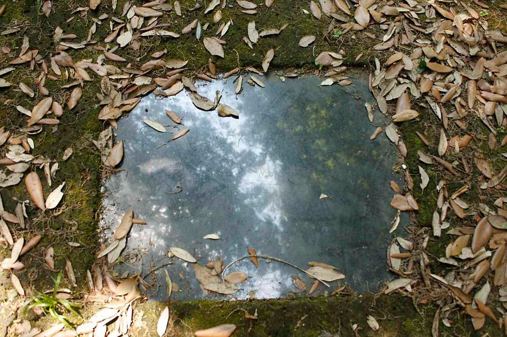 Nino Campisi, La luce, il raggio e lo specchio, Bosco della ragnaia, agosto 2011