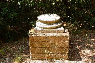 Bosco della ragnaia 07.08.2011 - 004.jpg
