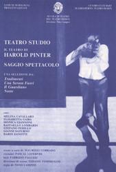 1992 - Il teatro di Harold Pinter