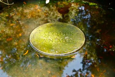 Nino Campisi, Aequus Animus, 2011-01