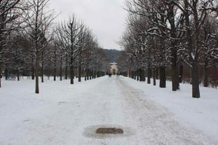 Schönbrunn, Vienna, 2010