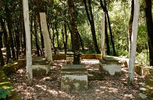 Bosco della ragnaia 07.08.2011 - 006.jpg