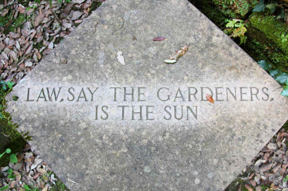 Law, say the gardeners, is the sun. Nino Campisi 2014, San Giovanni D'Asso