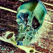 pine skull