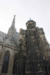 Stephandom, Vienna, 2009