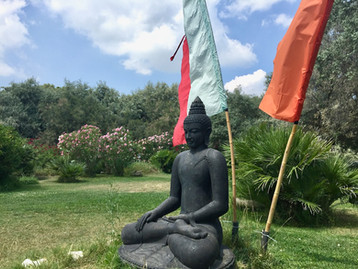 Buddha in riviera