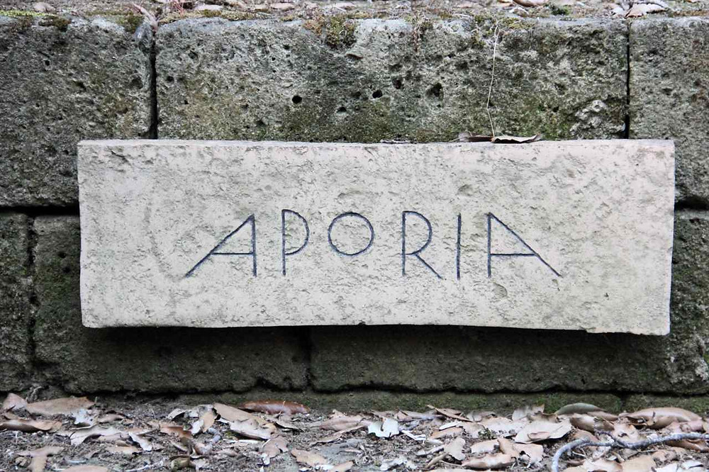 """""""Aporia"""", Bosco della ragnaia, Nino Campisi 2014"""