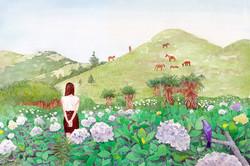 제주의 여름 꽃 수국