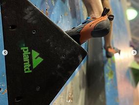 Climbing_Wall_Pittsburgh_Plantd_Volumes_