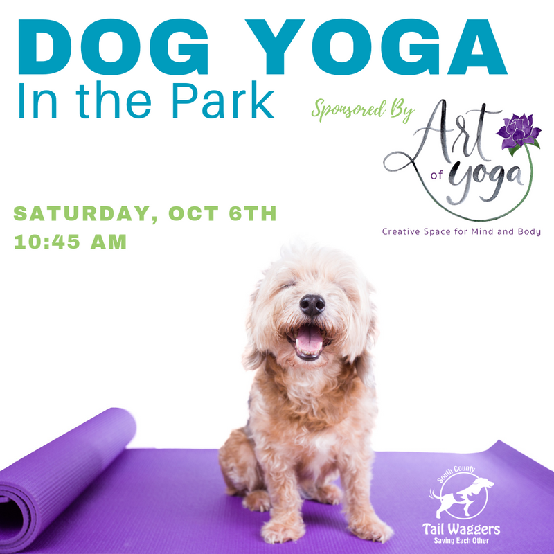 Dog Yoga in the Park