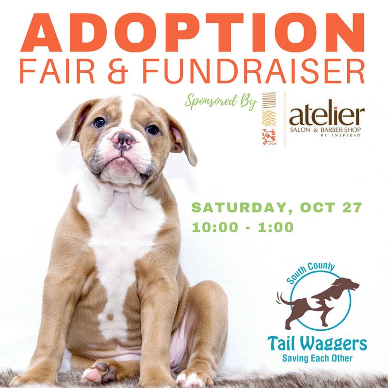 Adoption Fair & Fundraiser