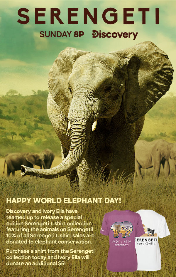 World Elephant Day, Poachers fear special agents, CITES