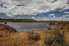 Lac de la Chicoutai