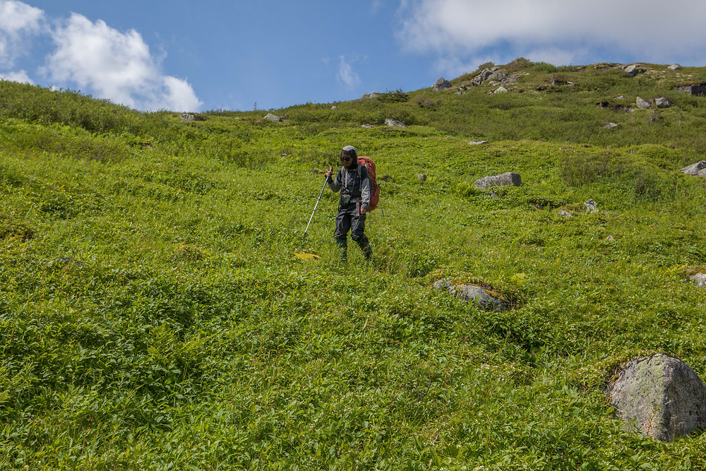 Descente dans la vallée pour rejoindre le mont Boissinot