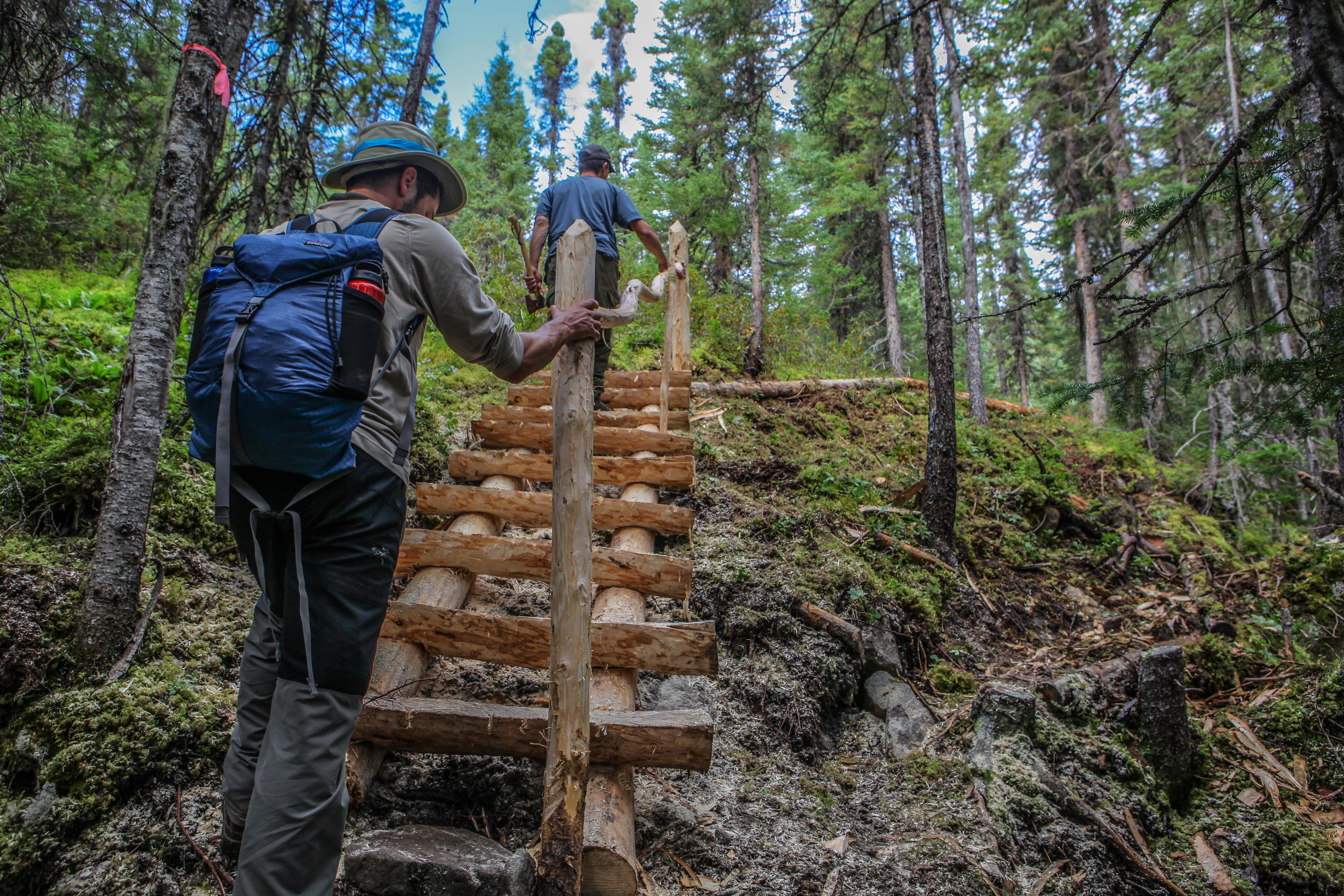 escalier harfang Nord