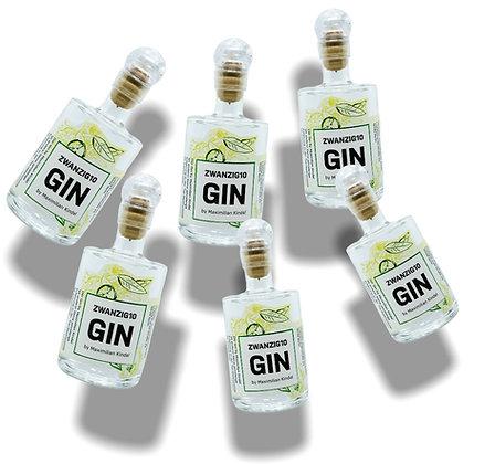 6x Zwanzig10 Gin 42% 0,05l