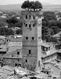 torre guinigi.png