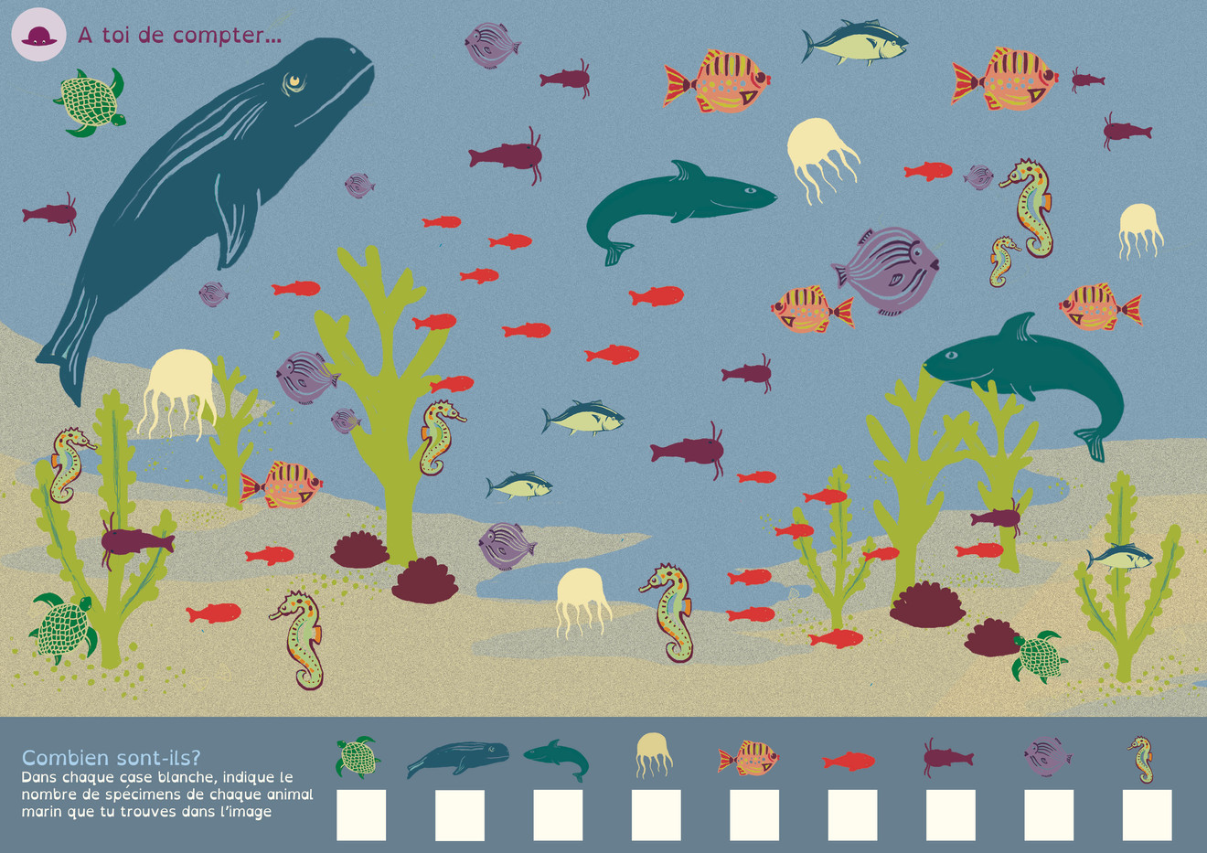 Color Ethik- Illustration & mise en page fiche ludo-éducative