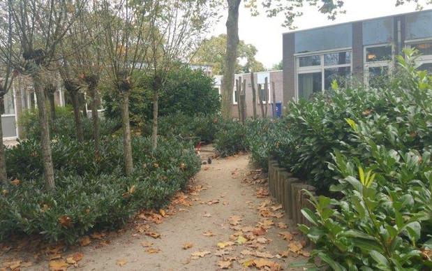groene kinderopvang herfst buroBlad