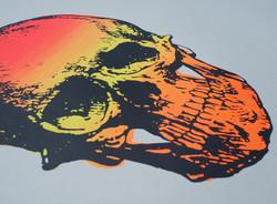 Skull Mono Print
