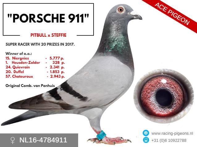 Photo Porsche 911 Comb. van Panhuis