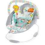 Bright Starts Cradling Bouncer, Whimsical Wild