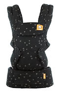 Baby Tula Explore Carrier, Discover