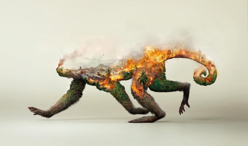 Zerstörung_Natur1.jpg
