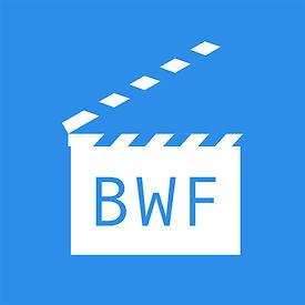 Blue Waterfall Films Logo