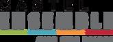 Logo Castel Ensemble avec Eric Benech