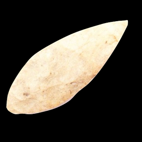 Bi-Point Blade