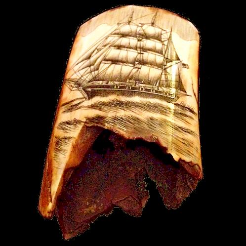Scrimshaw walrus tusk
