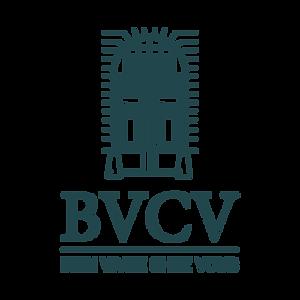 bvcv.png