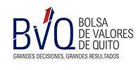 logo bvq.JPG