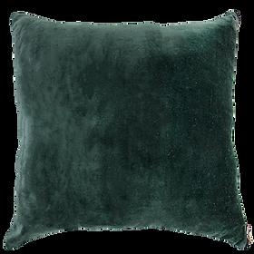 Velvet Cushion Beryl $59