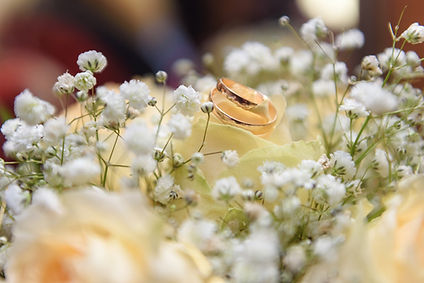 The rings of the young lie on the bride'