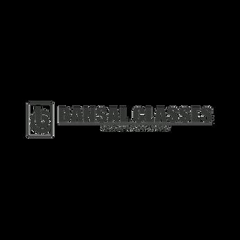 Bansal Classes Logo | Onedesign