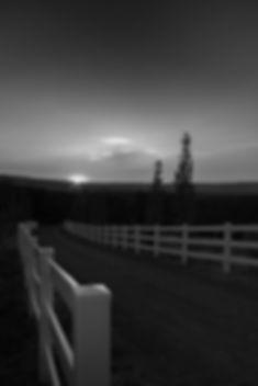 ranch fence.jpg
