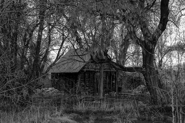 hooper shed 4600.jpg