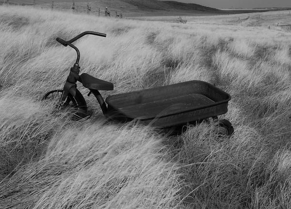 trike & wagon.jpg