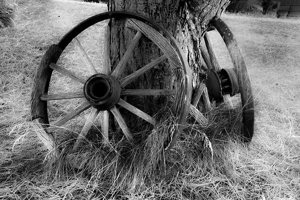 idaho wheels soft Jpeg (1 of 1).jpg
