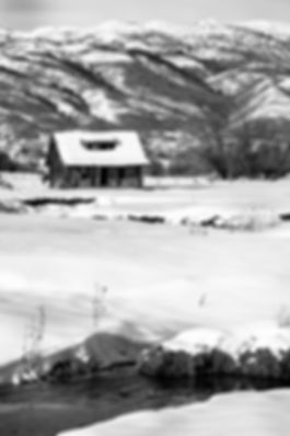 Huntsville cabin J60A5210 .jpg